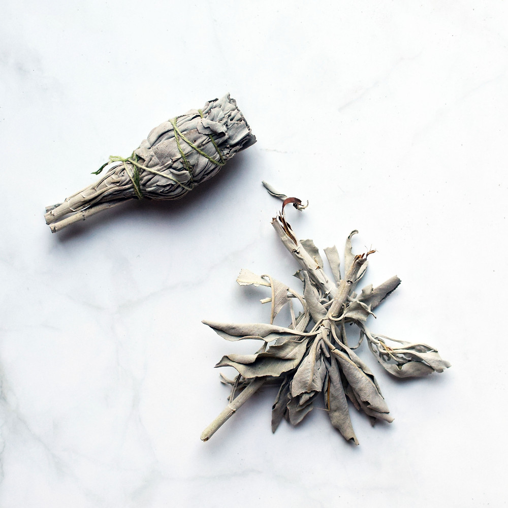 White sage smudge stick and leaf clusters