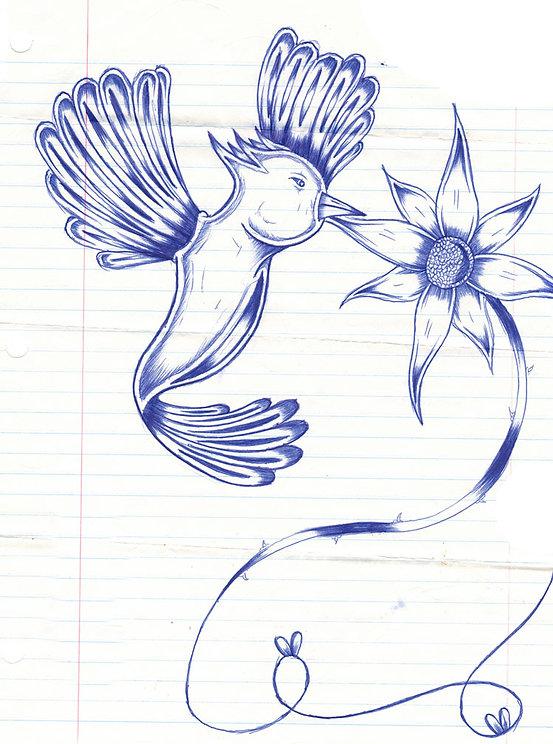 HummingbirdDrawing.jpg