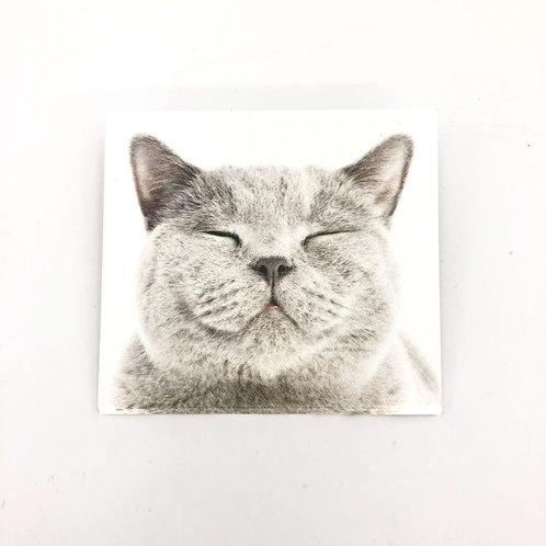 MASKfolio S [ Grey Cat ]