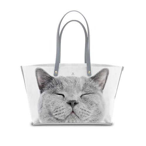 Animals | Grey Cat A01