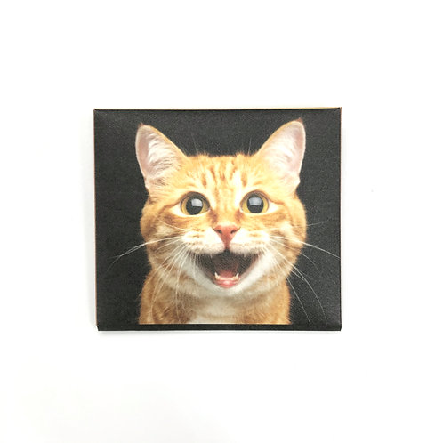 MASKfolio S [Cat]