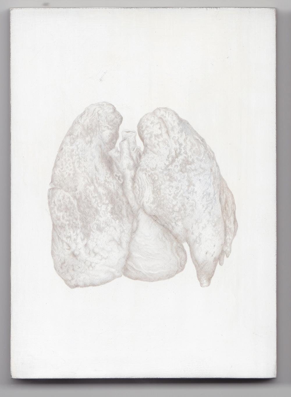 kirsty-harris-diseased+lungs-2013-600dpi.jpg