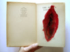 Kirsty Harris, The devils laughter, book, artist book, art, artist, london, sculpture, wound, blood, death, mortality