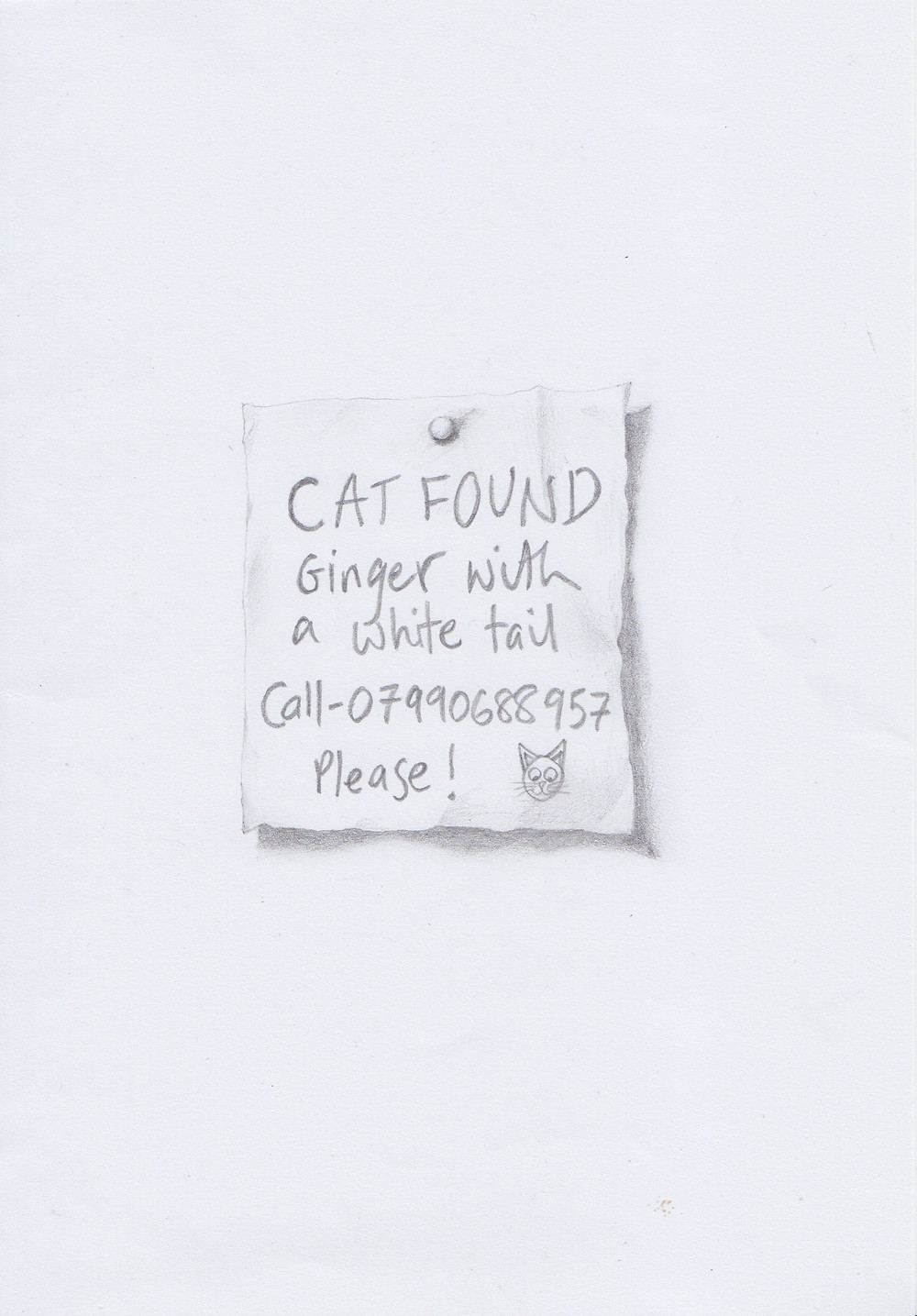 Kirsty Harris Cat Found 300dpi.jpg
