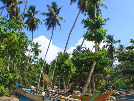 Experiencias viajeras II: Sur de Sri Lanka