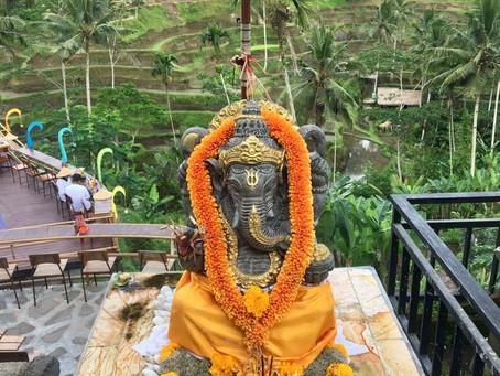 Experiencias viajeras III: Ubud y Canguu, Bali, Indonesia