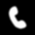 Naturally-Endigo-Icons_Phone.png