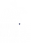 Logo BUDDY BEAR.png