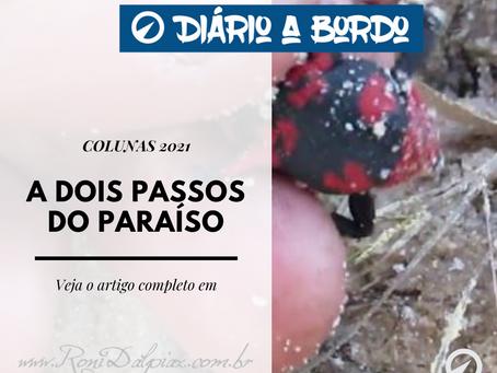 A DOIS PASSOS DO PARAÍSO