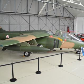 MuseoDoArSintra (36)