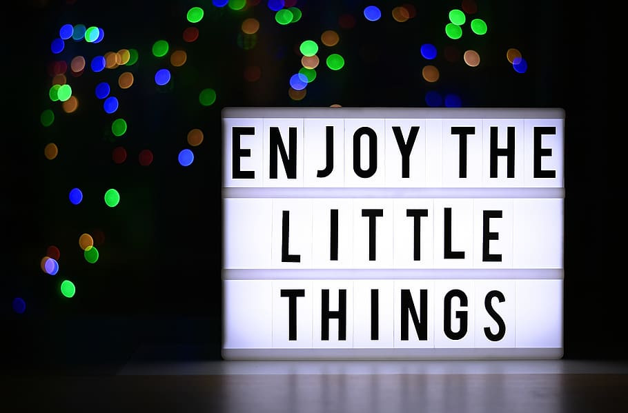 appreciative and gratitude - enjoy the little things in life