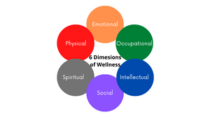 6 Dimensions to Achieve Optimal Health & Wellness