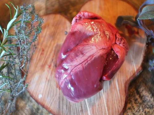 Pig Organs - Heart