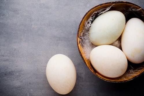 Farm Fresh Duck Eggs