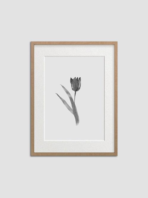 Tulip No. 6