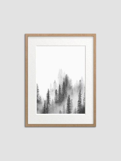 Forest Mist Portrait
