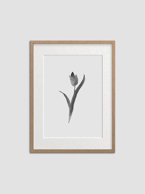 Tulip No. 9