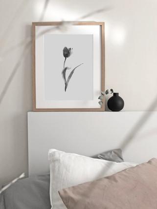 Tulip No. 1