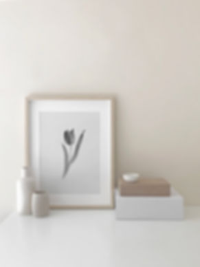 Tulip No. 2 Art Print by Melissa Selmin
