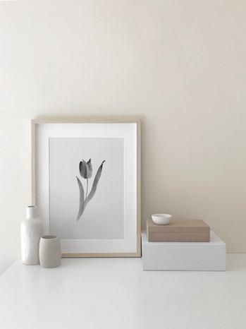 Tulip No. 2