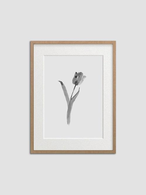 Tulip No. 3