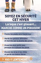 Walk Like a Penguin Poster - OA - French