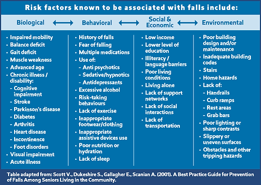 Risk Factors Table - English.png