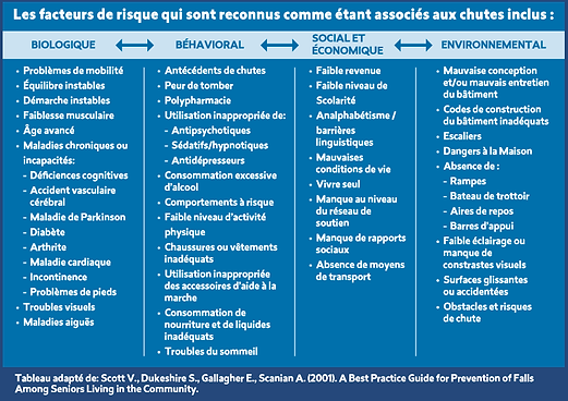 Fall Risk Factors Table - French.png