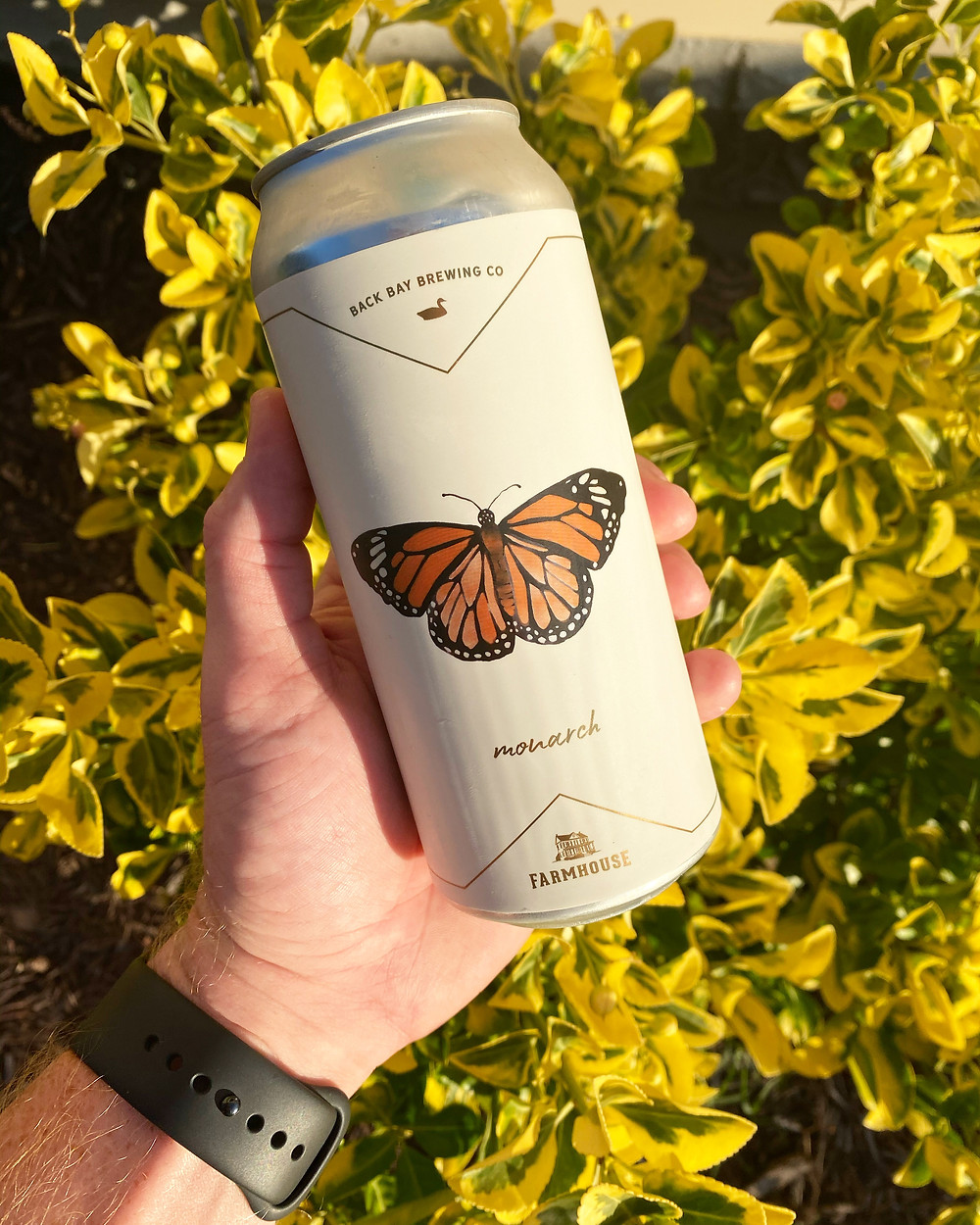 Farmhouse Brewing Monarch IPA - Craft Beer Review