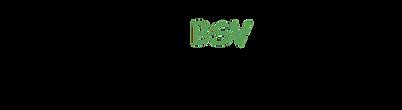 BSV-Logo.1 Kopie_bearbeitet.png