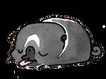 Pug Poses Sleepy Tongue PNG.png