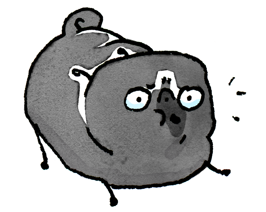 Pug Poses Woof PNG.png
