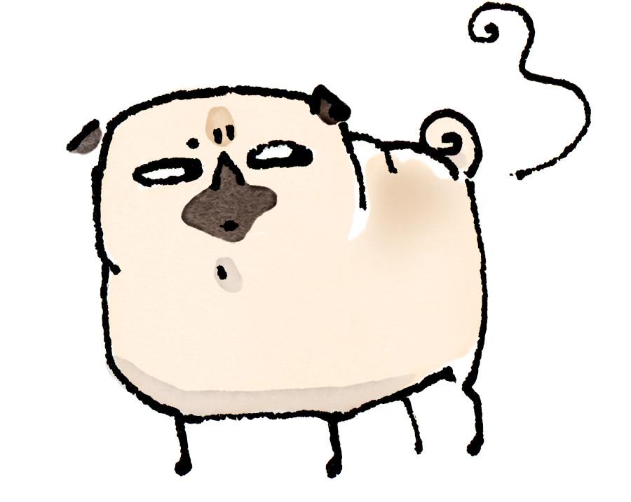 Pug Poses Suspicious Fart JPEG.jpg