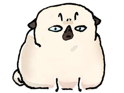 Pug Poses Miffed PNG.png