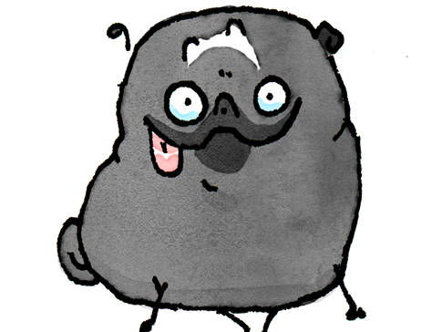 Pug Poses Happy Derp PNG.png