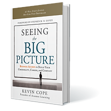 seeing the big picture