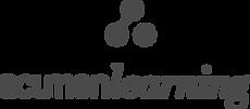 Acumen_Logo Grey.png