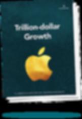 Trillion-dollar Growth Business Acumen Training