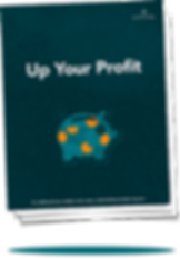 Up Your Profit Business Acumen Training