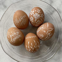 Pointed pen on eggs