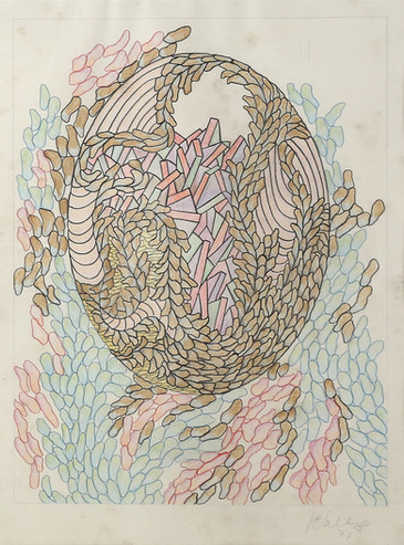 092 Dibujo s biologicos lapiz s papel 55