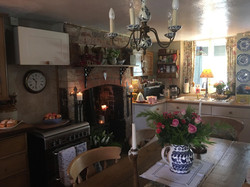 Dancia Cottage Kitchen ready with the dog's dinner