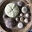 Thumbnail: Urchin Collection D