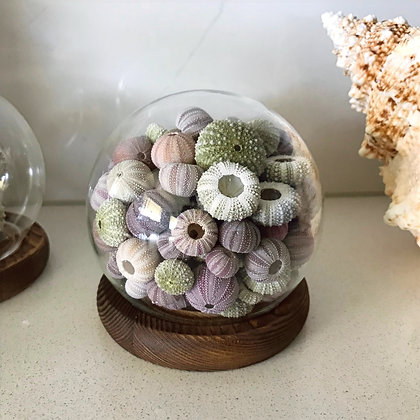 Round Mini Urchin Dome