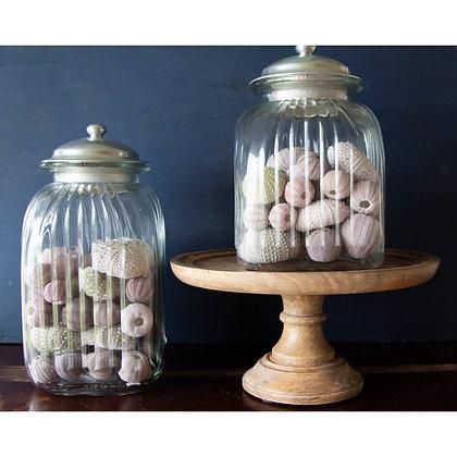 Urchin Jar