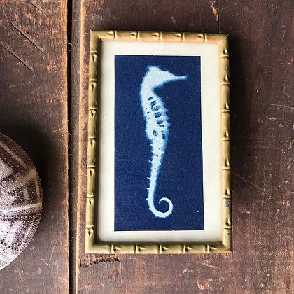 Framed Cyanotype Seahorse