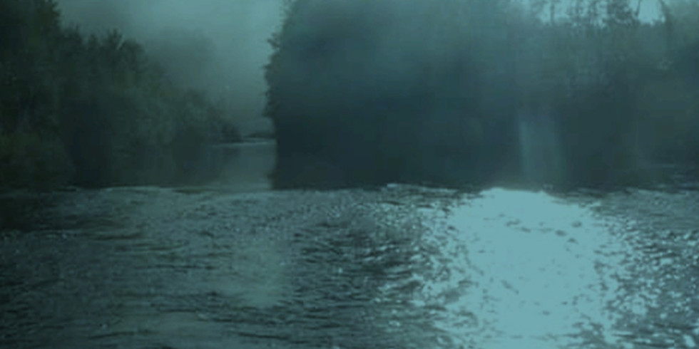 Il fiume, i pesci e altre mirabolanti avventure