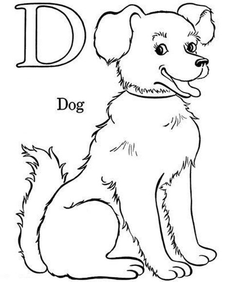 Dog Coloring Book Image.jpg