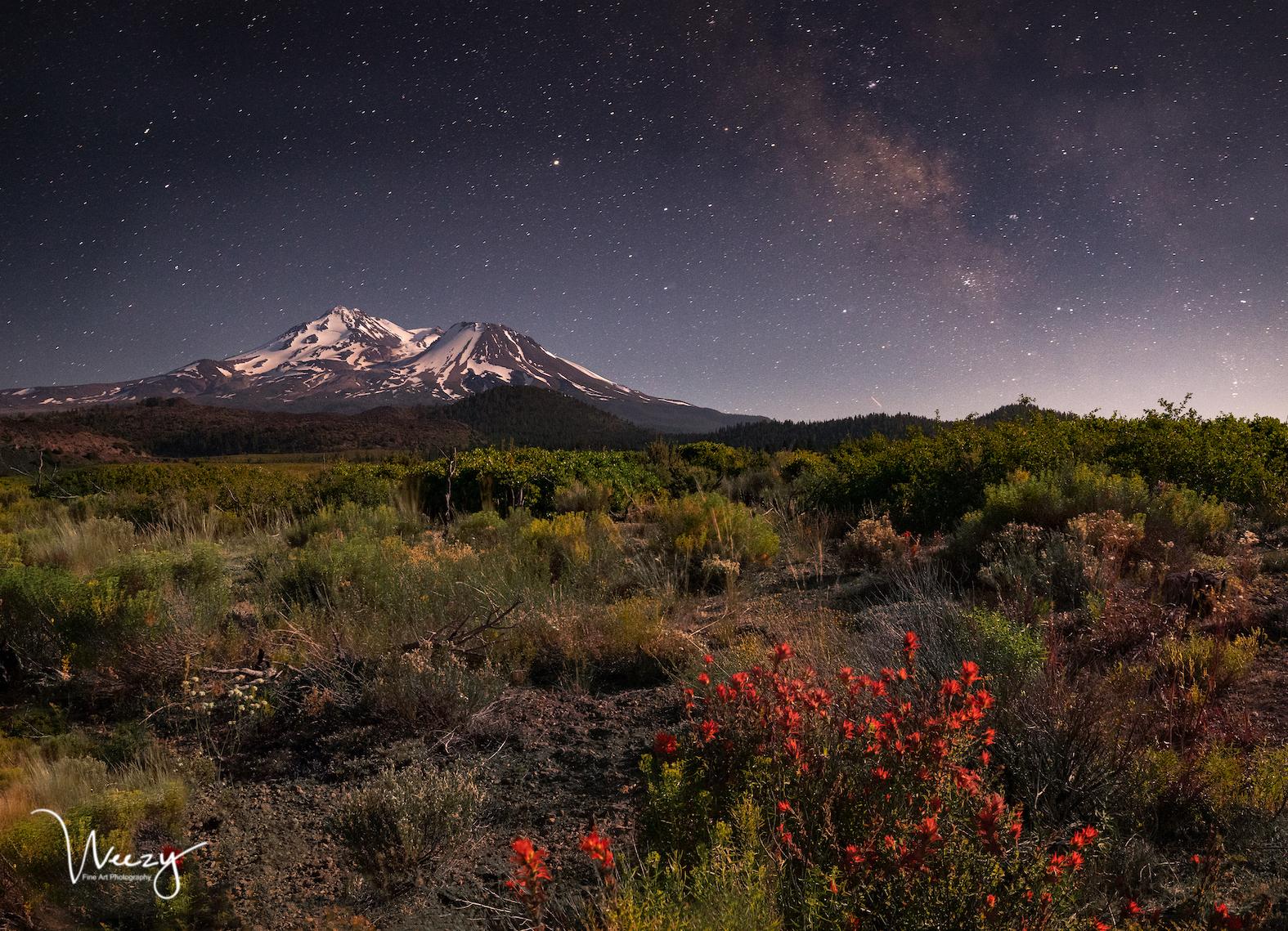 Mt. Shasta & Moonlight