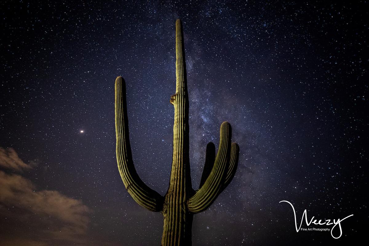 Saguaro Galaxy